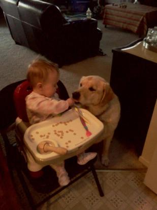 It didn't take Emery long to figure out why Ellie sat by her side every time she ate.
