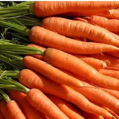 Carrots, Bikes andListening